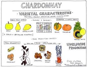 ChardonnayVarietalNotes1