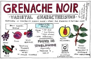 GrenacheNoir